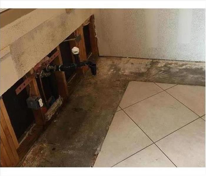 Mold Remediations After
