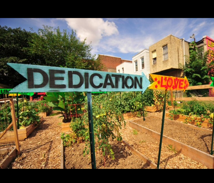 General Urban Gardens in Philadelphia on the Rise to Improve Neighborhoods