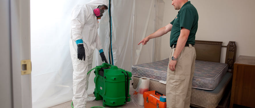 Philadelphia, PA mold removal process